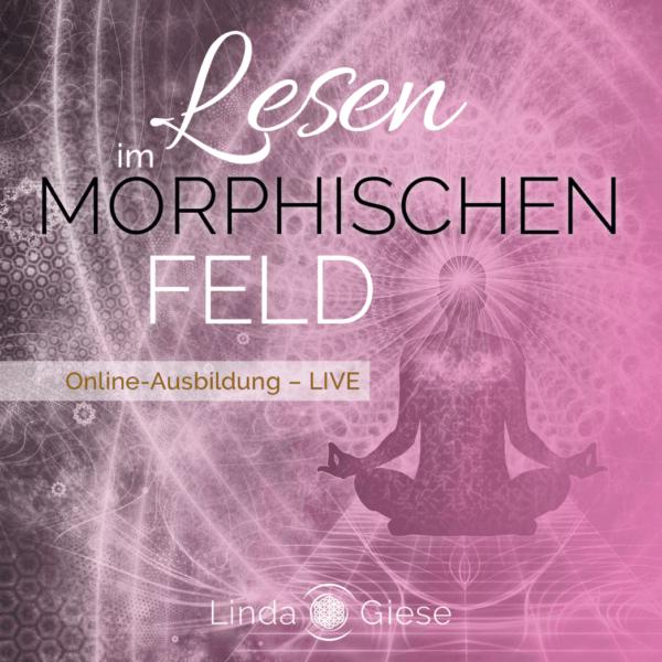 Linda Giese_Lesen im morphischen Feld_Online Ausbildung